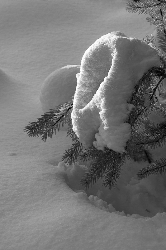 Naturens egen snöskulptur.