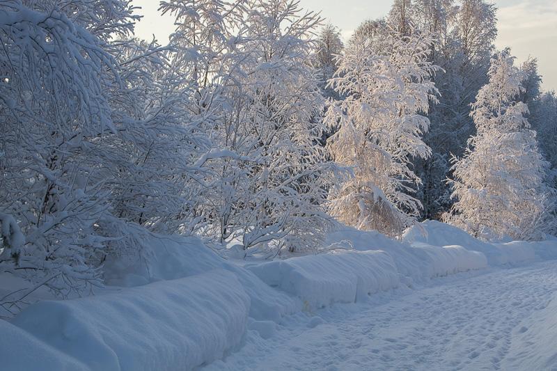 Snö i sol